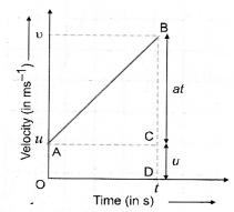 Motion Class 9 Important Questions Science Chapter 8 image - 27