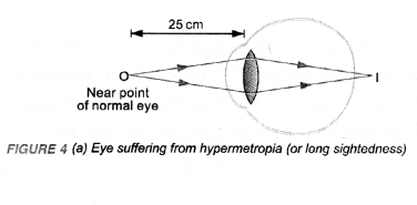 NCERT Exemplar Solutions for Class 10 Science Chapter 11 Human Eye and Colourful World image - 4