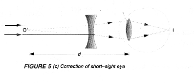 NCERT Exemplar Solutions for Class 10 Science Chapter 11 Human Eye and Colourful World image - 5