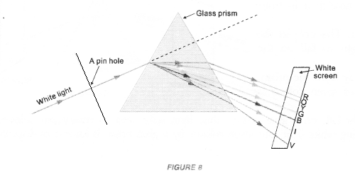NCERT Exemplar Solutions for Class 10 Science Chapter 11 Human Eye and Colourful World image - 8