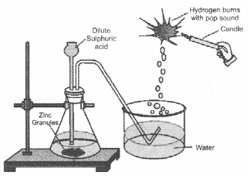 NCERT Exemplar Solutions for Class 10 Science Chapter 2 Acids, Bases and Salts image - 12