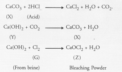 NCERT Exemplar Solutions for Class 10 Science Chapter 2 Acids, Bases and Salts image - 15