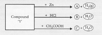 NCERT Exemplar Solutions for Class 10 Science Chapter 2 Acids, Bases and Salts image - 18