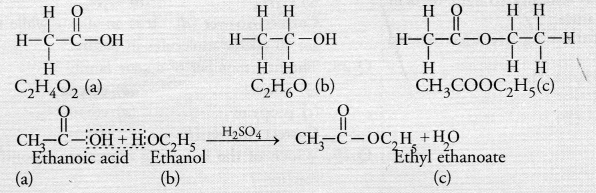 NCERT Exemplar Solutions for Class 10 Science Chapter 4 Carbon and Its Compounds image - 18