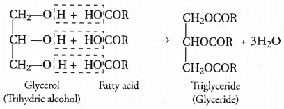 NCERT Exemplar Solutions for Class 10 Science Chapter 4 Carbon and Its Compounds image - 20