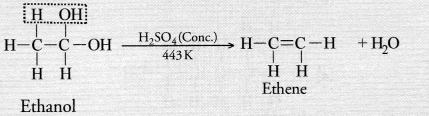 NCERT Exemplar Solutions for Class 10 Science Chapter 4 Carbon and Its Compounds image - 25