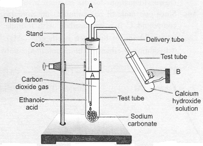 NCERT Exemplar Solutions for Class 10 Science Chapter 4 Carbon and Its Compounds image - 41