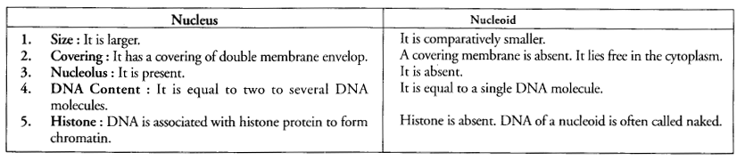 NCERT Exemplar Solutions for Class 9 Science Chapter 5 The Fundamental Unit of Life image -8