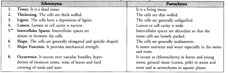 NCERT Exemplar Solutions for Class 9 Science Chapter 6 Tissues image - 8