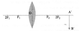 NCERT Solutions for Class 10 Science Chapter 10 Light Reflection and Refraction image -19