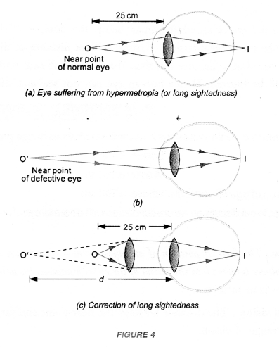 NCERT Solutions for Class 10 Science Chapter 11 Human Eye and Colourful World image - 4
