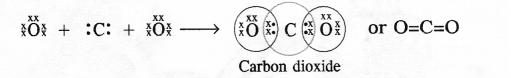 NCERT Solutions for Class 10 Science Chapter 4 Carbon and its Compounds image - 1