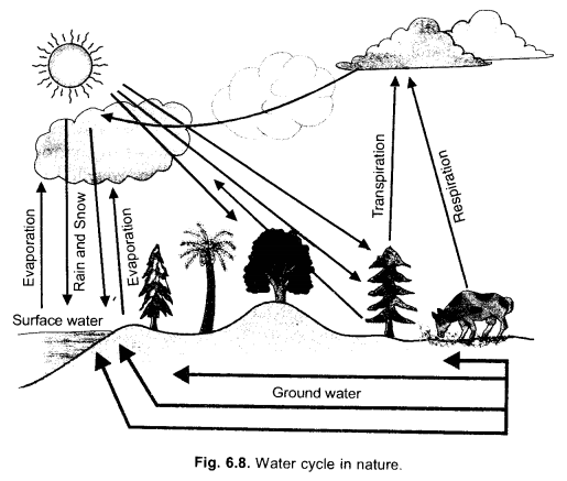 Natural Resources Class 9 Important Questions Science Chapter 14 image - 13