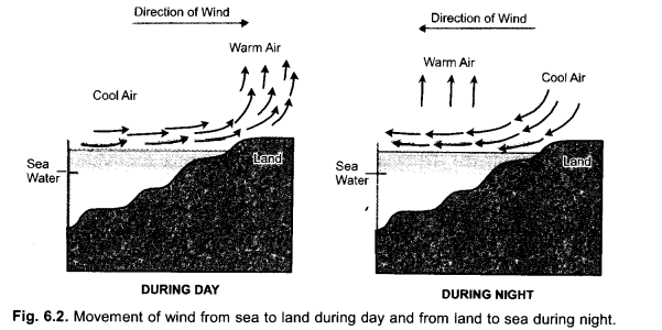 Natural Resources Class 9 Important Questions Science Chapter 14 image - 3