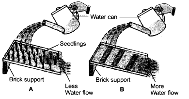Natural Resources Class 9 Important Questions Science Chapter 14 image - 4