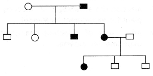 Class 12 Biology Important Questions Chapter 5 Principles of Inheritance and Variation 10