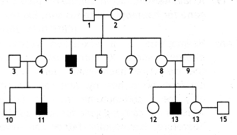 Class 12 Biology Important Questions Chapter 5 Principles of Inheritance and Variation 11