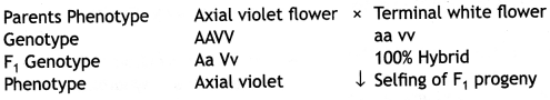 Class 12 Biology Important Questions Chapter 5 Principles of Inheritance and Variation 27