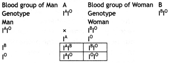 Class 12 Biology Important Questions Chapter 5 Principles of Inheritance and Variation 9