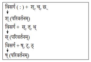 Abhyasvan Bhav Sanskrit Class 10 Solutions Chapter 6 सन्धिः 7