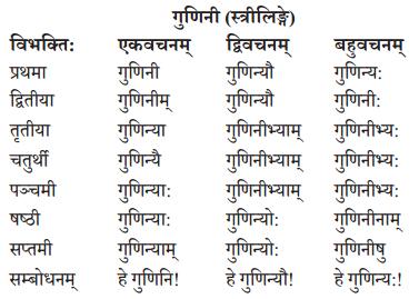 Abhyasvan Bhav Sanskrit Class 10 Solutions Chapter 8 प्रत्यया 14