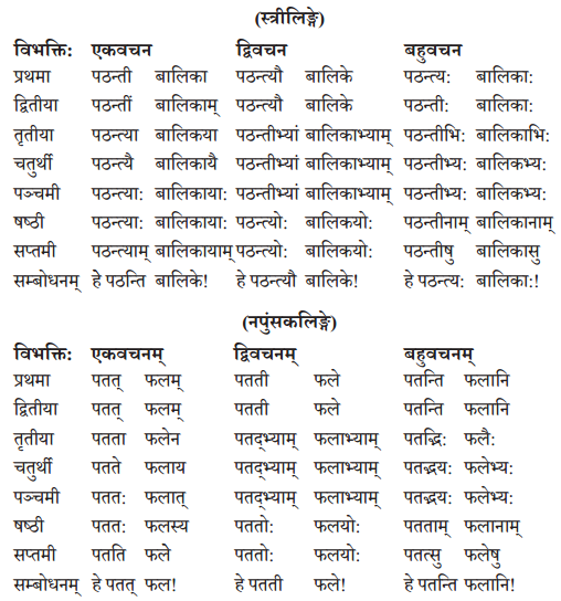 Abhyasvan Bhav Sanskrit Class 10 Solutions Chapter 8 प्रत्यया 3