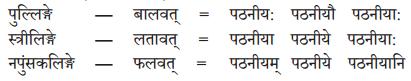 Abhyasvan Bhav Sanskrit Class 10 Solutions Chapter 8 प्रत्यया 6