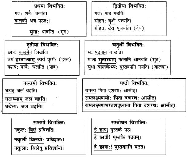 Abhyasvan Bhav Sanskrit Class 9 Solutions Chapter 10 शब्दरूपाणि 2