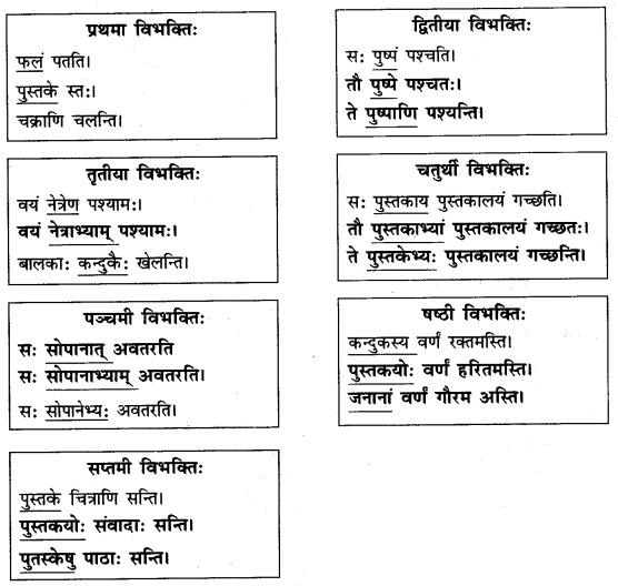 Abhyasvan Bhav Sanskrit Class 9 Solutions Chapter 10 शब्दरूपाणि 3