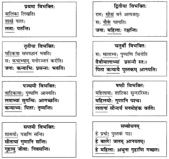 Abhyasvan Bhav Sanskrit Class 9 Solutions Chapter 10 शब्दरूपाणि 5