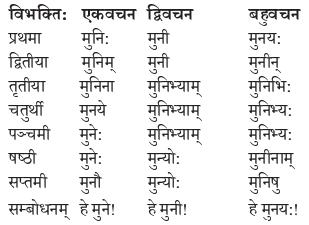 Abhyasvan Bhav Sanskrit Class 9 Solutions Chapter 10 शब्दरूपाणि 6