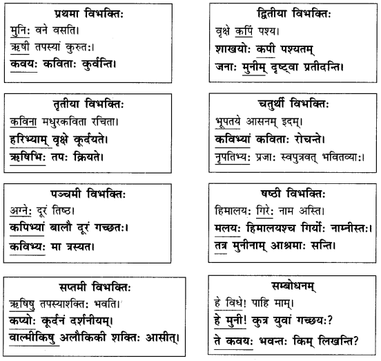 Abhyasvan Bhav Sanskrit Class 9 Solutions Chapter 10 शब्दरूपाणि 7