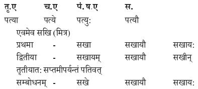 Abhyasvan Bhav Sanskrit Class 9 Solutions Chapter 10 शब्दरूपाणि 8