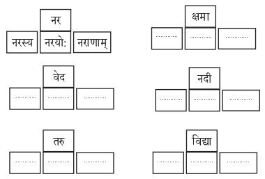 Abhyasvan Bhav Sanskrit Class 9 Solutions Chapter 6 कारकोपपदविभक्तिः 17