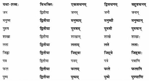 Abhyasvan Bhav Sanskrit Class 9 Solutions Chapter 6 कारकोपपदविभक्तिः 28