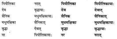 Abhyasvan Bhav Sanskrit Class 9 Solutions Chapter 6 कारकोपपदविभक्तिः 39
