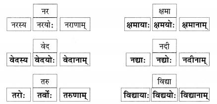 Abhyasvan Bhav Sanskrit Class 9 Solutions Chapter 6 कारकोपपदविभक्तिः 45