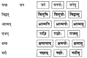 Abhyasvan Bhav Sanskrit Class 9 Solutions Chapter 6 कारकोपपदविभक्तिः 52