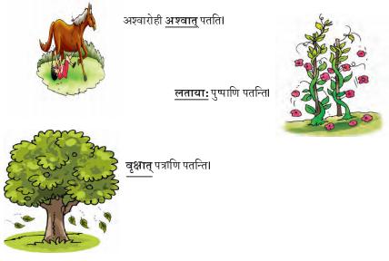 Abhyasvan Bhav Sanskrit Class 9 Solutions Chapter 6 कारकोपपदविभक्तिः 62