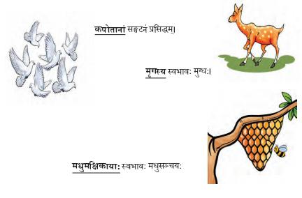 Abhyasvan Bhav Sanskrit Class 9 Solutions Chapter 6 कारकोपपदविभक्तिः 66