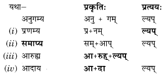 Abhyasvan Bhav Sanskrit Class 9 Solutions Chapter 8 उपसर्गाव्ययप्रत्ययाः 5