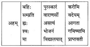 Class 10 Sanskrit Grammar Book Solutions अव्ययाः Q3