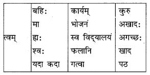 Class 10 Sanskrit Grammar Book Solutions अव्ययाः Q5.1