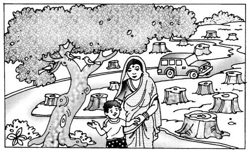 Class 10 Sanskrit Grammar Book Solutions चित्रवर्णनम् अथवा अनुच्छेदलेखनम् 3