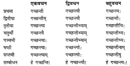 Class 10 Sanskrit Grammar Book Solutions प्रत्ययाः II Q3.1