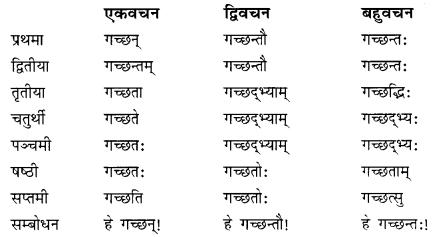 Class 10 Sanskrit Grammar Book Solutions प्रत्ययाः II Q3