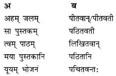 Class 10 Sanskrit Grammar Book Solutions प्रत्ययाः III Q2.1