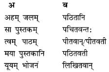 Class 10 Sanskrit Grammar Book Solutions प्रत्ययाः III Q2