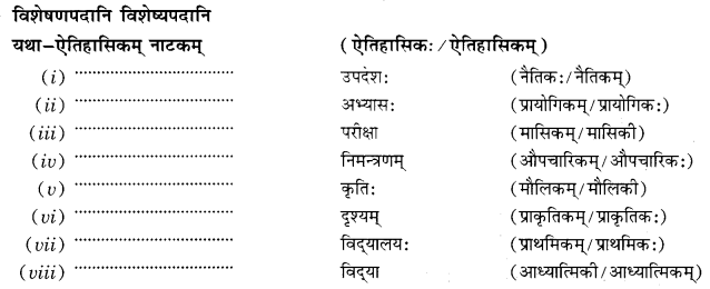Class 10 Sanskrit Grammar Book Solutions प्रत्ययाः Q13