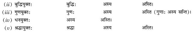 Class 10 Sanskrit Grammar Book Solutions प्रत्ययाः Q8.1